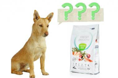 ¿La comida de mi perro tiene cenizas?